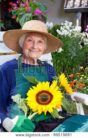 Old Woman In Gardening Outfit Holding Sunflowers