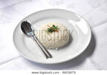 Rice Steamed White Dish Set