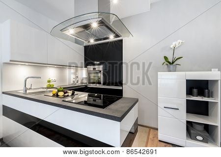 Black And White Kitchen Modern Interior Design