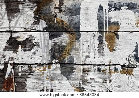 Weathered barn planks with white splashes of paint, knots, rusted hinge.