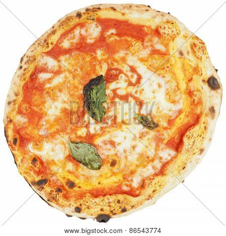 Margherita Pizza Isolated