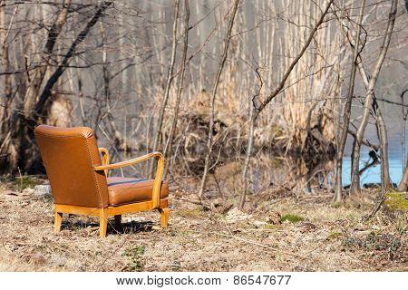 Vintage armchair in an autumn forest, scene