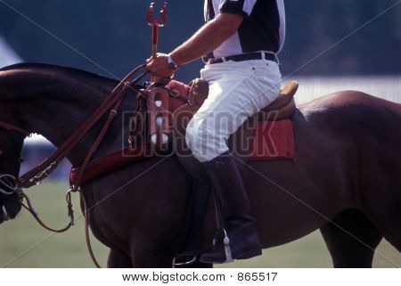 Polo official on horseback