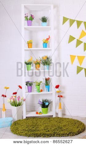 Shelves With Flowers