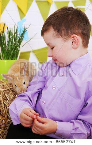Rabbit Sniffs Boy