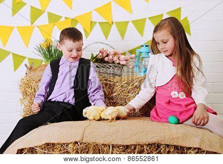 Children Fed Chickens