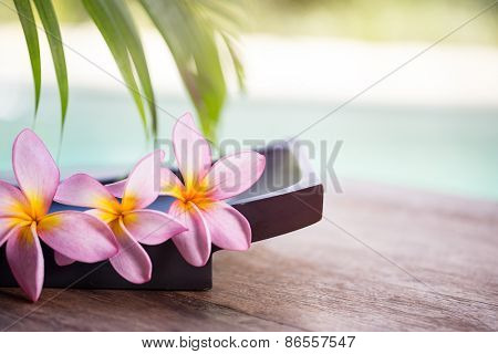 spa and wellness background,  tropical environment with frangipani flower