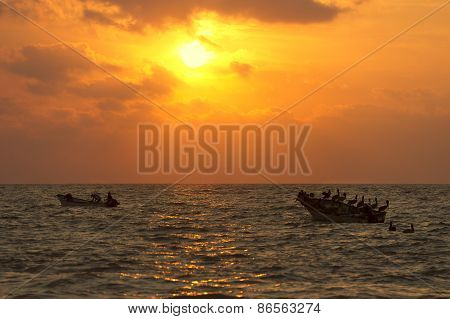 Boats Birds Ocean Silhouette