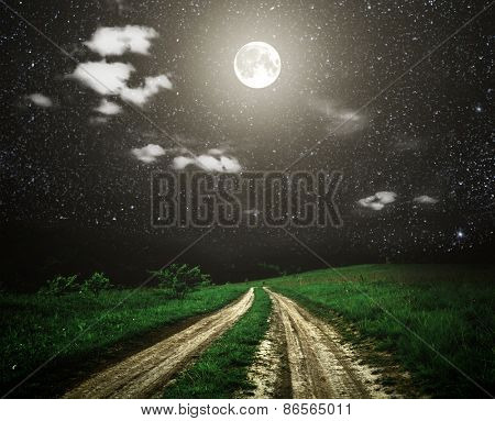 Large beautiful spring the field with a distant kind on a forest in night and bright moon on sky. Elements of this image furnished by NASA