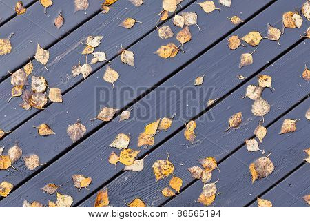 Wooden wet outdoor floor.
