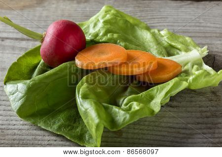 Close Up Shot Of Radish And Sliced Carrots On A Salad Leaf