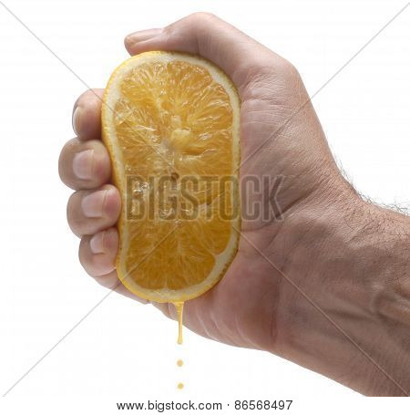 Orange Juice Squeeze
