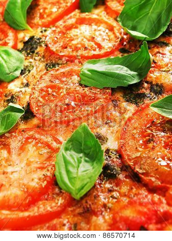 Margharita Pizza