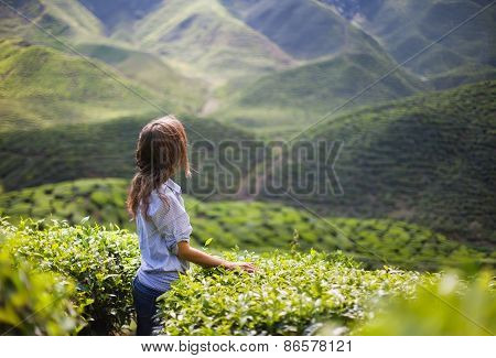Young Woman On Tea Plantation