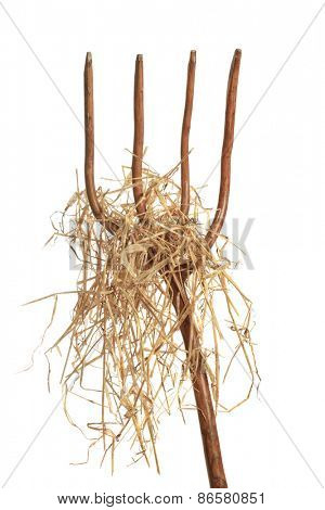Pitchfork loaded with hay isolated on a white background