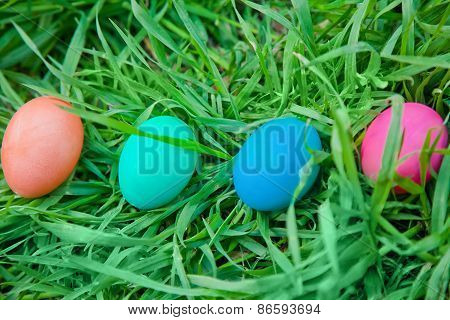 Four Colored Eggs In The Grass