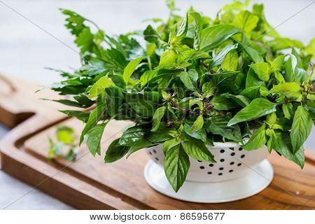 Varieties Of Herbs In Colander