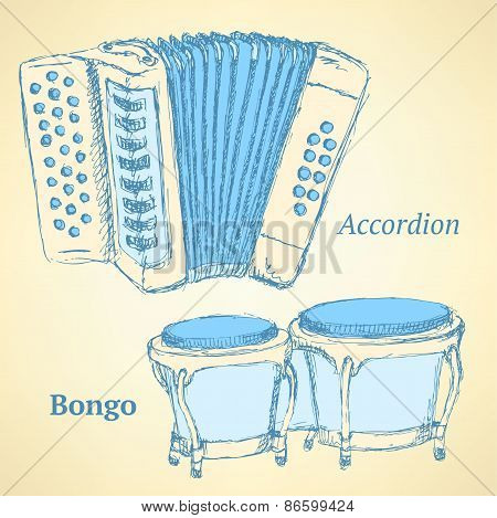 Sketch Bongos And Accordion In Vintage Style