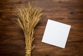 picture of spike  - Wheat spikes on dark wooden board with paper - JPG