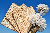 picture of piety  - jewish holiday of Passover - JPG