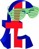 pic of spectacles  - vector illustration pound wearing spectacles on vacation - JPG