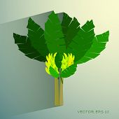 picture of banana tree  - Ecological Concept - JPG