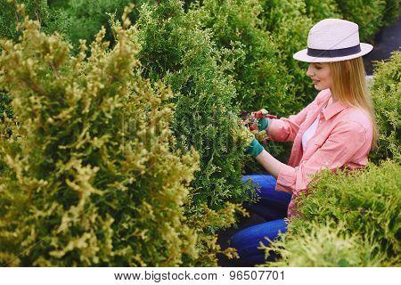 Female farmer taking care of garden plants