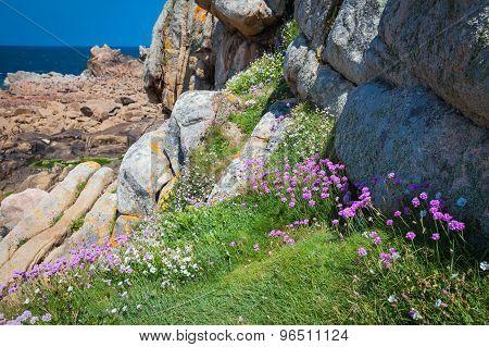 Isle de BrehatBrittany