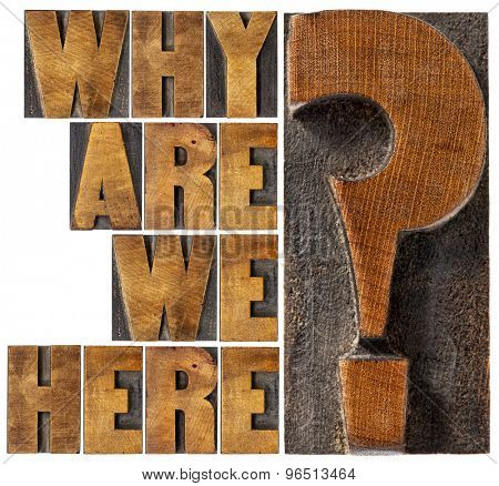 why are we here philosophical and spiritual question - isolated word abstract in letterpress wood type blocks