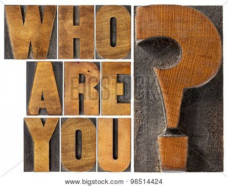 who are you question - isolated word abstract in letterpress wood type blocks
