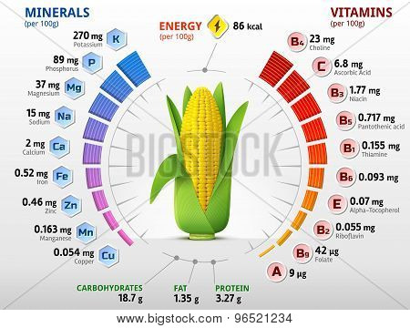 Vitamins And Minerals Of Corn Cob