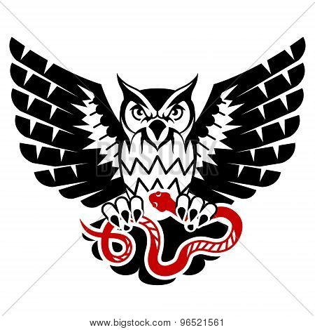 Owl With Open Wings Attacking Snake