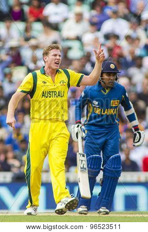 LONDON, ENGLAND - June 17 2013: Australia's James Faulkner appeals for the wicket of Sri Lanka's Angelo Mathews during the ICC Champions Trophy cricket match between Sri Lanka and Australia.