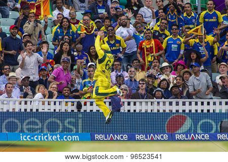 LONDON, ENGLAND - June 17 2013: Australia's Phillip Hughes fails to make a catch on the boundary during the ICC Champions Trophy international cricket match between Sri Lanka and Australia.