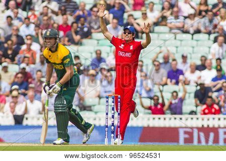 LONDON, ENGLAND - June 19 2013: England's captain Alastair Cook celebrates the wicket of South Africa's captain AB de Villiers at the ICC Champions Trophy match between England and South Africa
