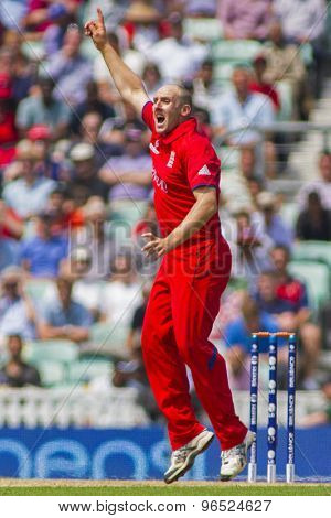 LONDON, ENGLAND - June 19 2013: England's James Tredwell appealing during the ICC Champions Trophy semi final match between England and South Africa at The Oval Cricket Ground