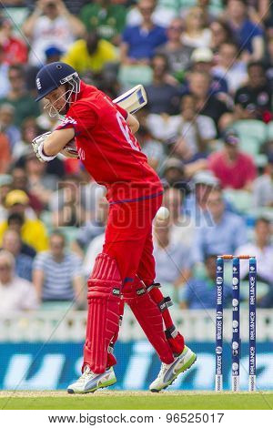 LONDON, ENGLAND - June 19 2013: Joe Root during the ICC Champions Trophy semi final match between England and South Africa at The Oval Cricket Ground