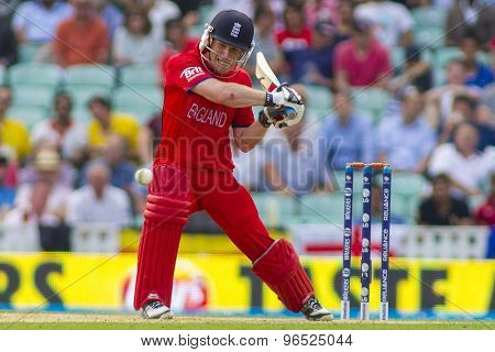 LONDON, ENGLAND - June 19 2013: Eoin Morgan batting during the ICC Champions Trophy semi final match between England and South Africa at The Oval Cricket Ground