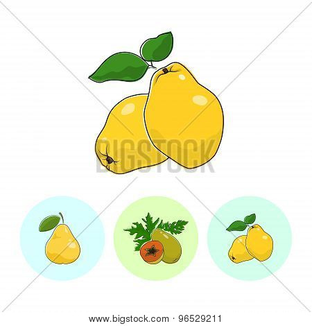 Fruit Icons, Quince, Papaya, Pear