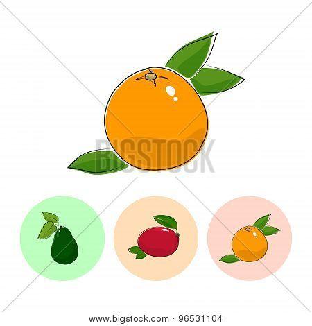 Fruit Icons, Grapefruit, Mango ,avocado