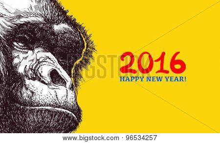 The year of the monkey. Chinese new year 2016. Monkey year.