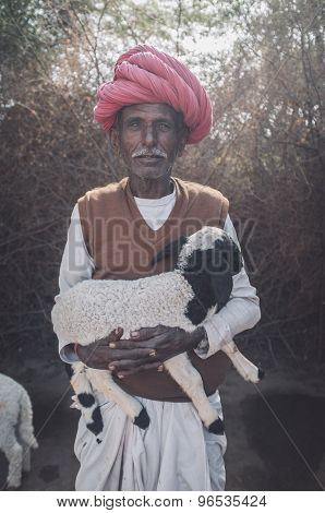 GODWAR REGION, INDIA - 13 FEBRUARY 2015: Elderly Rabari tribesman holds lamb in outdoor stable. Post-processed with grain, texture and colour effect.