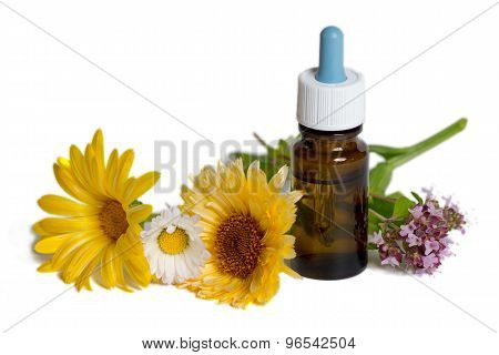 Bottle With Calendula, Chamomile And Mint Flowers