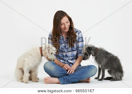 Studio Shot Of Woman With Two Pet Lurcher Dogs