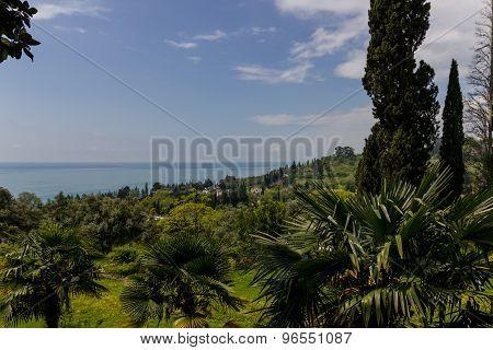 Coastline With Blue Sky