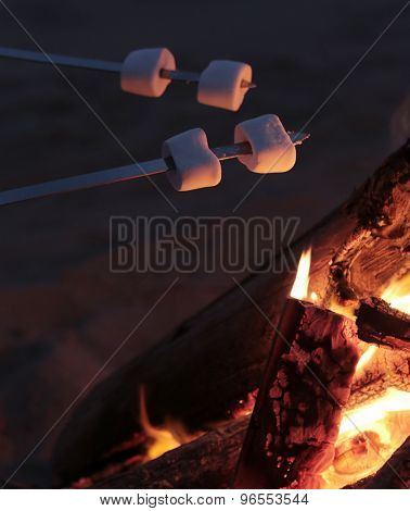 Outdoor. Bonfire on the beach
