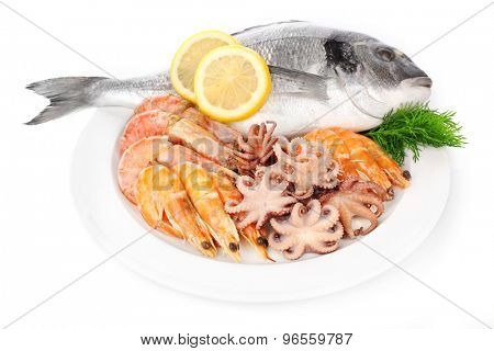 Fresh dorado fish and other seafood isolated on white