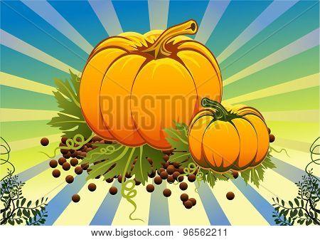 Still Life Of Pumpkins On The Vine Leaves