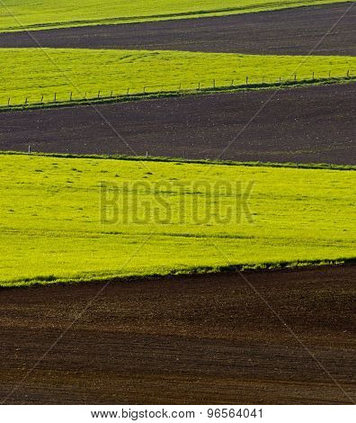 Farm Field Patterns Cultivated