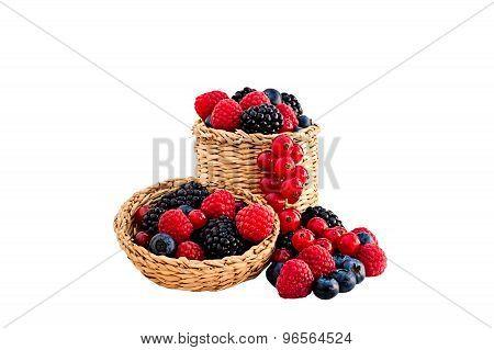 Forest Fruit In A Wicker Basket